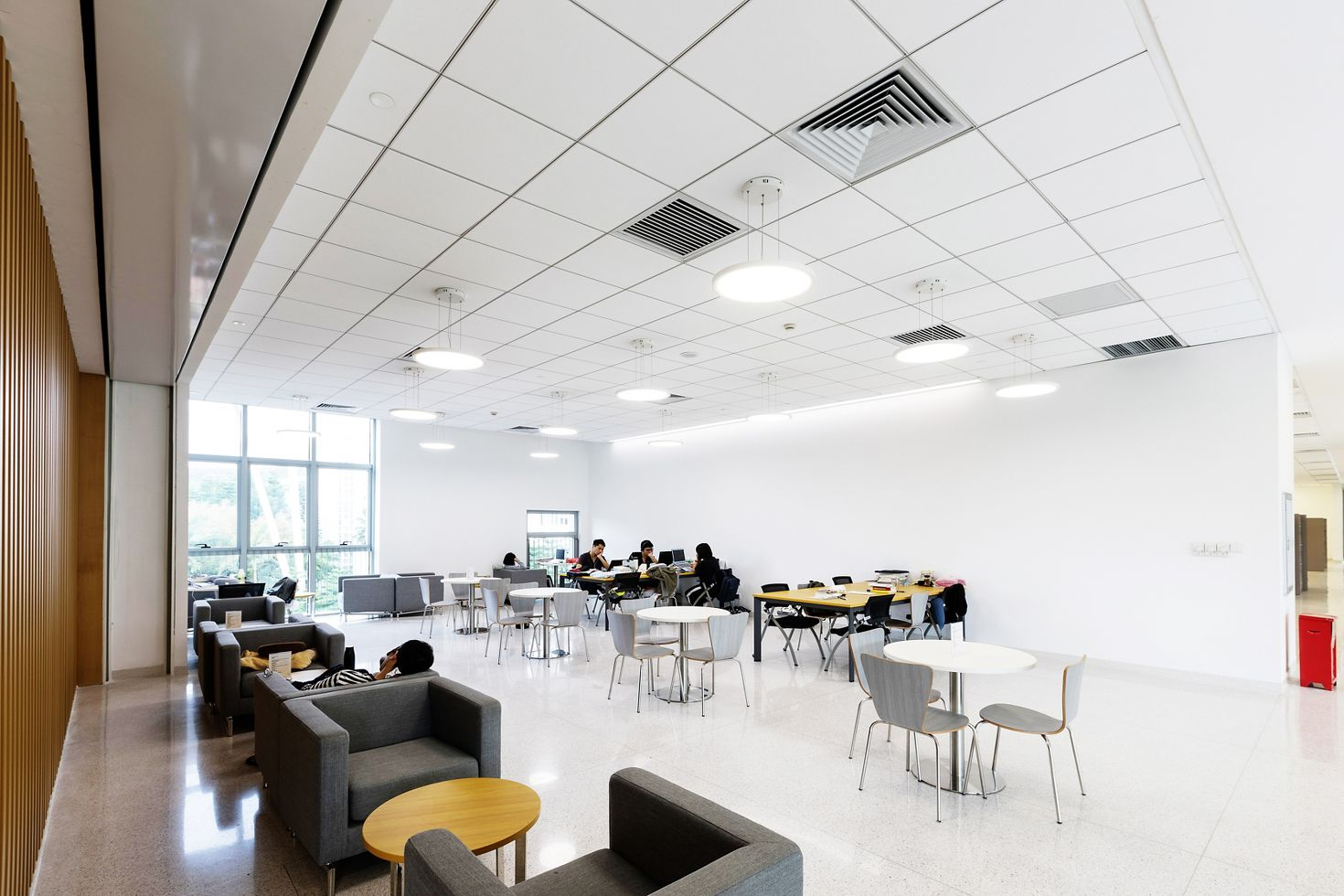Suspended Ceilings and Roofing